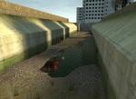 bullsquids_canals