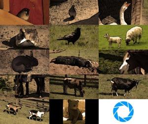 glados_screens_animals